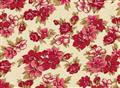 Classic Elegance - Large Floral on Cream